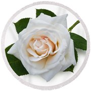 White Rose Round Beach Towel by Jane McIlroy