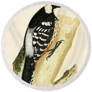 White Rumped Woodpecker Round Beach Towel by English School