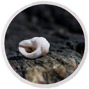 White Shell Round Beach Towel