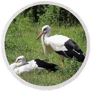 White Storks Round Beach Towel