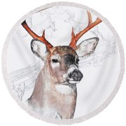 White-tailed Deer Round Beach Towel by Barbara Keith