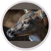 White Tailed Deer Facial Profile Closeup Portrait Round Beach Towel