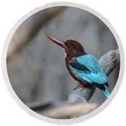 White-throated Kingfisher 02 Round Beach Towel