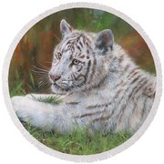 White Tiger Cub 2 Round Beach Towel by David Stribbling