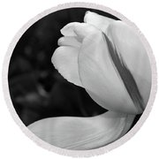 Round Beach Towel featuring the photograph White Tulip In Black And White by Nadalyn Larsen