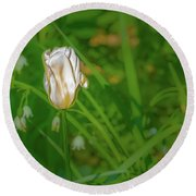 Round Beach Towel featuring the photograph White Tulip June 2016.  by Leif Sohlman