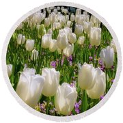 White Tulips In Bloom Round Beach Towel