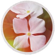 White Vinca With Vivid Highligts  Round Beach Towel
