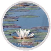 White Water Lilies Round Beach Towel