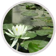 Round Beach Towel featuring the photograph White Water Lily 3 by Randall Weidner