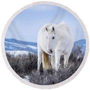 White Wild Horse Mystic Of Sand Wash Basin Round Beach Towel