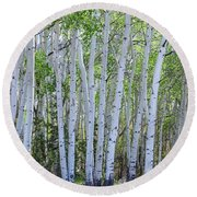 White Wilderness Round Beach Towel by James BO Insogna
