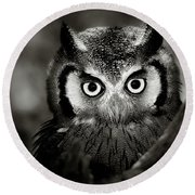 Whitefaced Owl Round Beach Towel