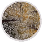 Round Beach Towel featuring the photograph Whiteout by Tony Beck