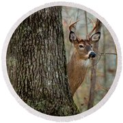 Whitetail #31 Round Beach Towel