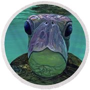 Round Beach Towel featuring the painting Who Me? by Darice Machel McGuire
