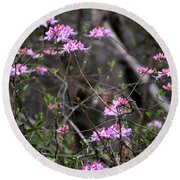 Round Beach Towel featuring the photograph Who Put The Wild In Wildflowers by Skip Willits