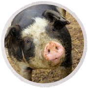 Wilbur Round Beach Towel
