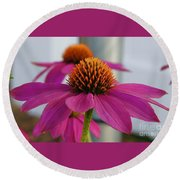 Wild Berry Coneflower Round Beach Towel