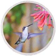 Wild Birds - Hummingbird Art Round Beach Towel