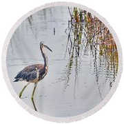 Wild Birds - Tricolored Heron Round Beach Towel