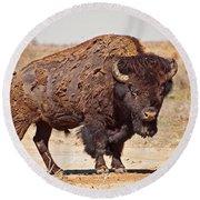 Wild Bison Round Beach Towel