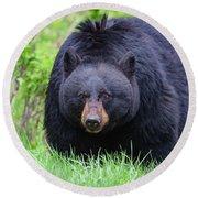 Wild Black Bear Round Beach Towel