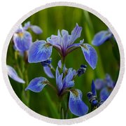 Wild Blue Iris Round Beach Towel