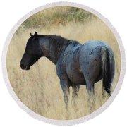 Wild Blue Mustang Round Beach Towel