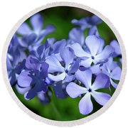 Wild Blue Phlox Dspf0391 Round Beach Towel by Gerry Gantt