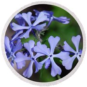 Wild Blue Phlox Dspf0392 Round Beach Towel by Gerry Gantt