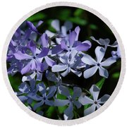 Wild Blue Phlox Dspf0395 Round Beach Towel by Gerry Gantt
