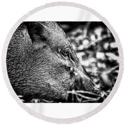 Wild Boar Round Beach Towel