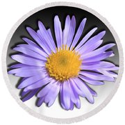 Round Beach Towel featuring the photograph Wild Daisy by Shane Bechler