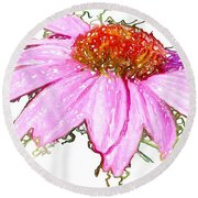 Round Beach Towel featuring the photograph  Wild Flower Three by Heidi Smith