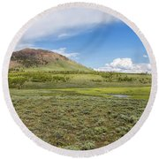 Round Beach Towel featuring the photograph Wild Flowers And Grasses At Yellowstone by John M Bailey