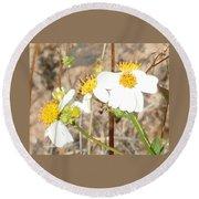 Wild Flowers At Waimea Canyon Round Beach Towel by Karen J Shine