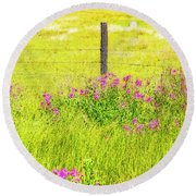 Wild Flowers  By The  Fence Round Beach Towel