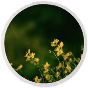 Evening Wild Flowers Round Beach Towel by Kelly Wade