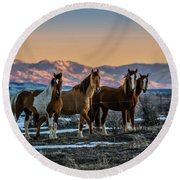 Round Beach Towel featuring the photograph Wild Horse Group by Bryan Carter