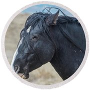 Wild Horse Profile Round Beach Towel