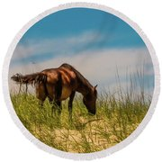 Wild Horse And Dragon Flies Round Beach Towel