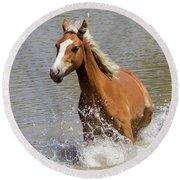 Wild Horse Splashing At The Water Hole Round Beach Towel