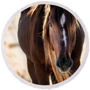 Wild Horse Watching Round Beach Towel