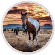 Wild Horses At Sunset Round Beach Towel
