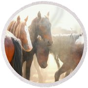 Wild Horses - Australian Brumbies 2 Round Beach Towel