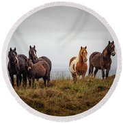 Wild Horses In Ireland Round Beach Towel