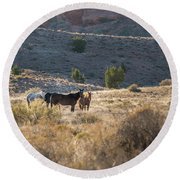 Round Beach Towel featuring the photograph Wild Horses In Monument Valley by Jon Glaser