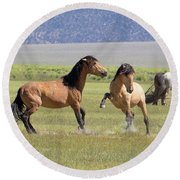 Wild Horses In The Eastern Sierra  Round Beach Towel
