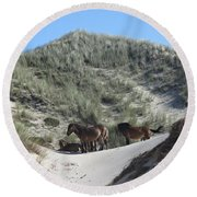 Wild Horses In The Noordhollandse Duinreservaat Round Beach Towel